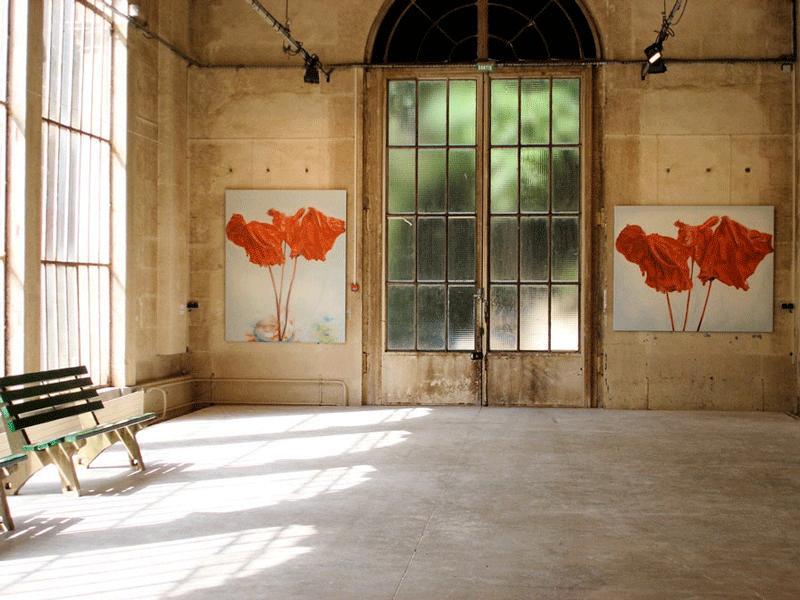 anthuriums-L'Orangerie