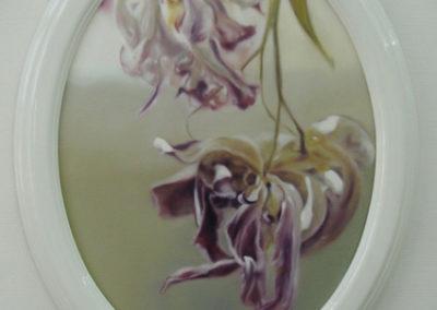 Tulipae Rosae, médaillon 2