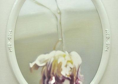 Tulipae Rosae, médaillon 3