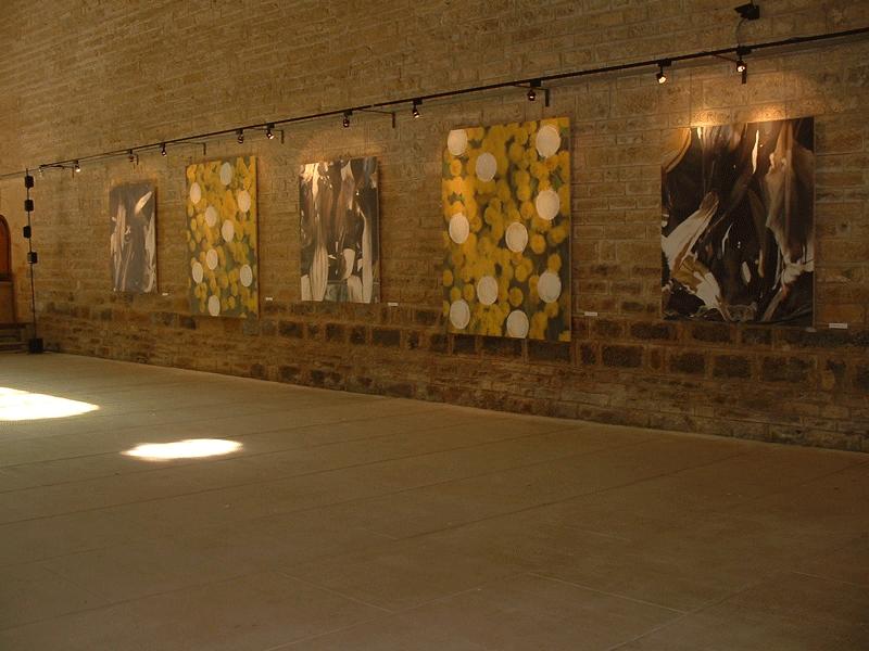 vanités et mimosas-Marnans